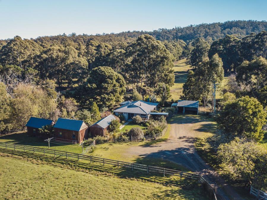 Inala Cottage - Inala Nature Tours - Inala Country Accommodation - Brad Moriarty - Pademelon Creative