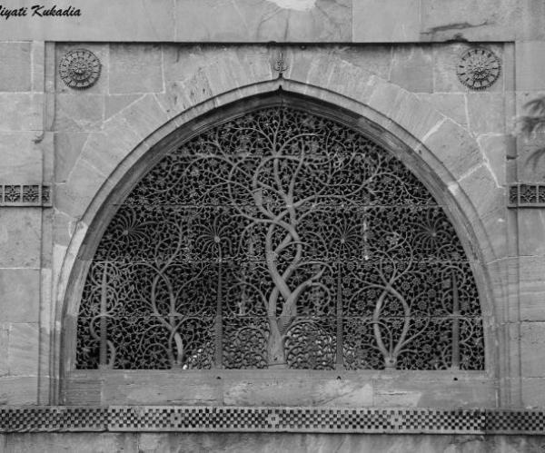 Sidi Saived Jali - Soar - Inala Nature Tours