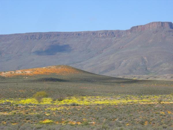 Wonderful Cape scenery by Richard White